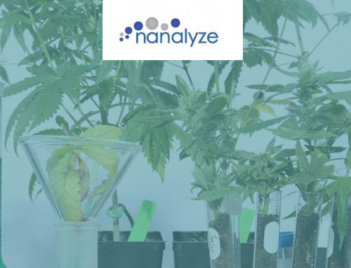 6 Cannabis Biotech Companies for Growing the Best Weed